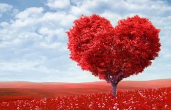 Когда День Святого Валентина (День влюбленных)?