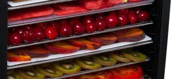 Рейтинг лучших сушилок для овощей и фруктов 2017. ТОП 7